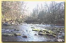 В весеннее время малые реки заливы